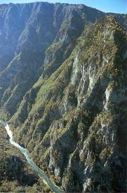 Черногория каньон реки тара